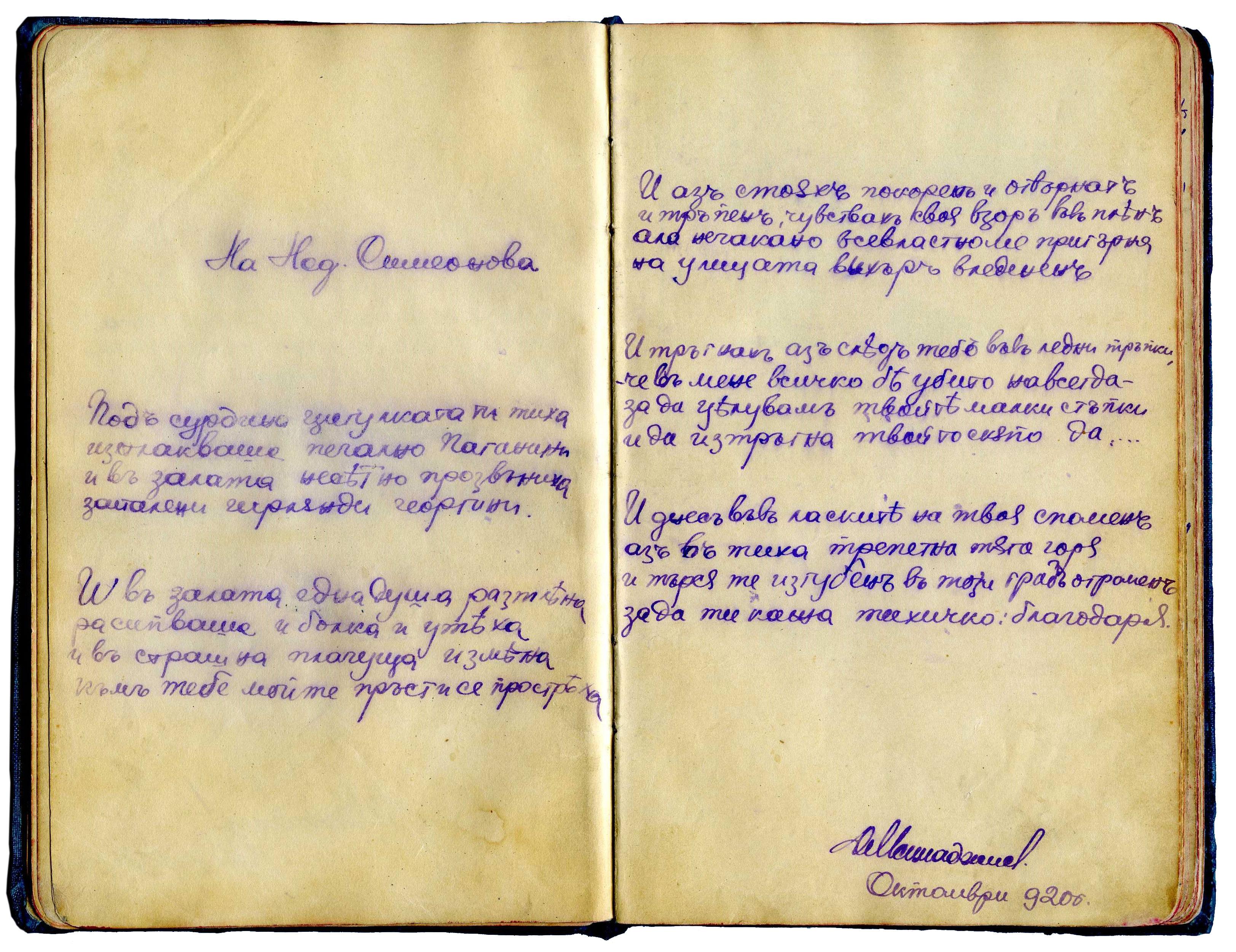 IvanMinevVulcahnov11.jpg