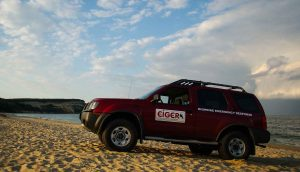 Highrise rescue Nissan truck